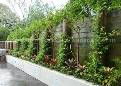 Landscape Gardener Hibiscus Coast Landscaping Gardening Akl
