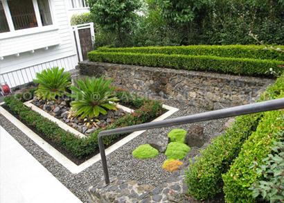 Ready lawn auckland new lawn design garden ideas north shore for Low maintenance herb garden